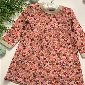 Gymboree Fall Baby Dress